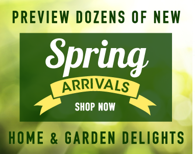 New Spring Catalogue Arrivals